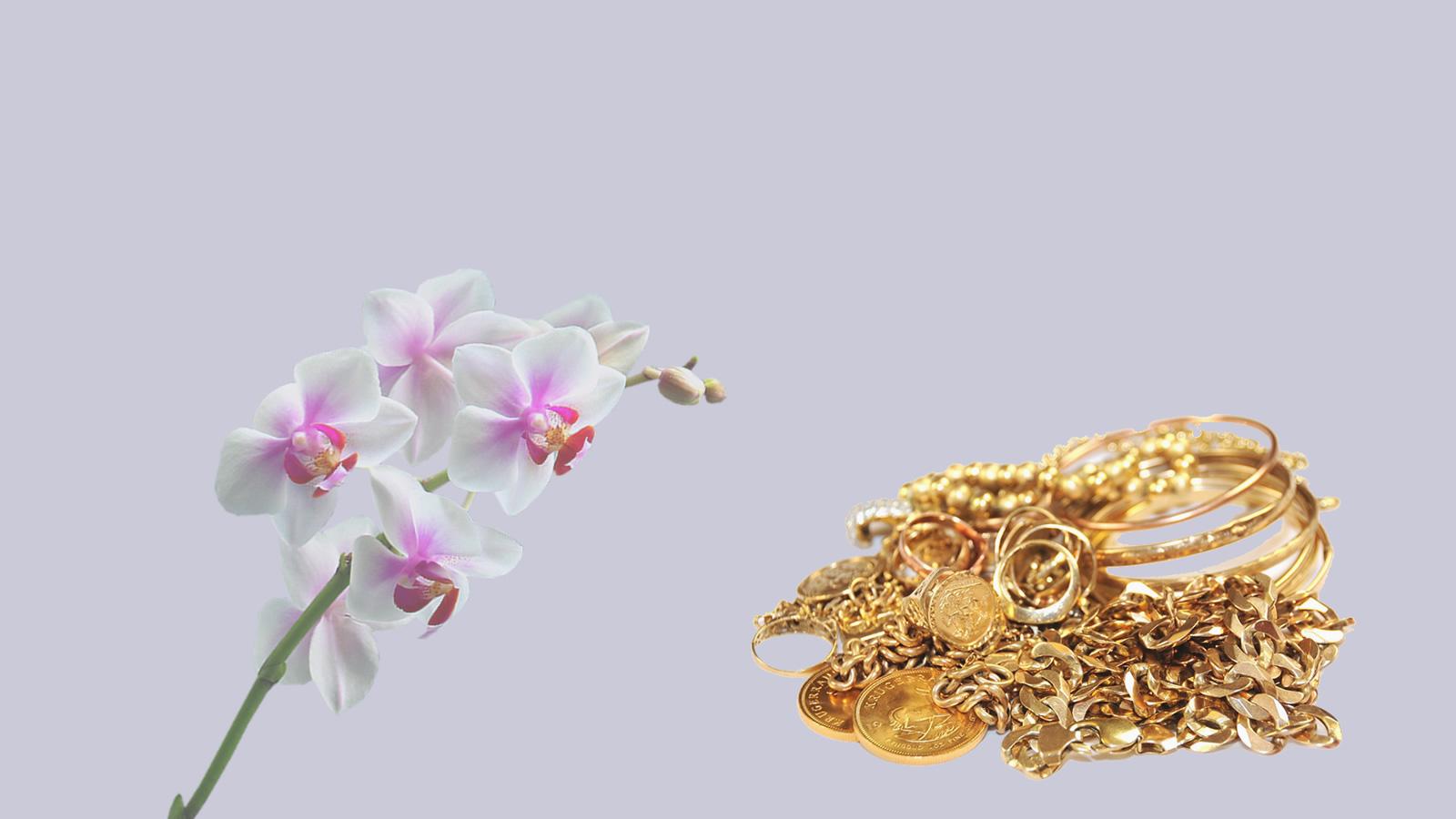 cambio-oro-govoni-gioielli